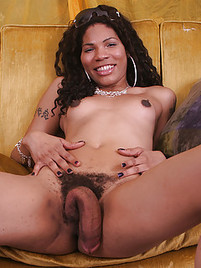 hairy shemales Bigcock